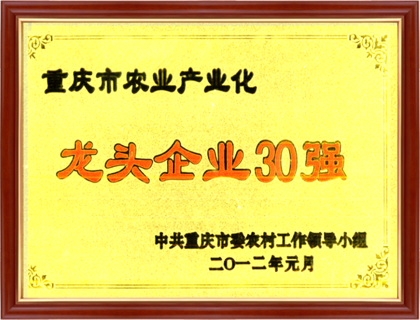 资质荣誉4