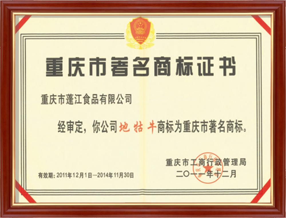 资质荣誉9